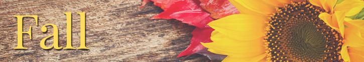 Fall & Autumn